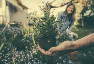 How To Stage Your Garden To Sell Your Home In Peterborough